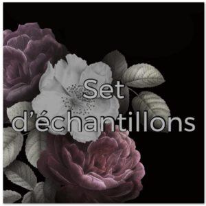 Set d'échantillons